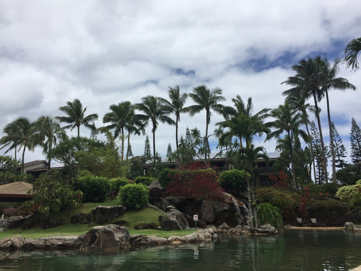 2016-04-10 Kauai iPhone 1