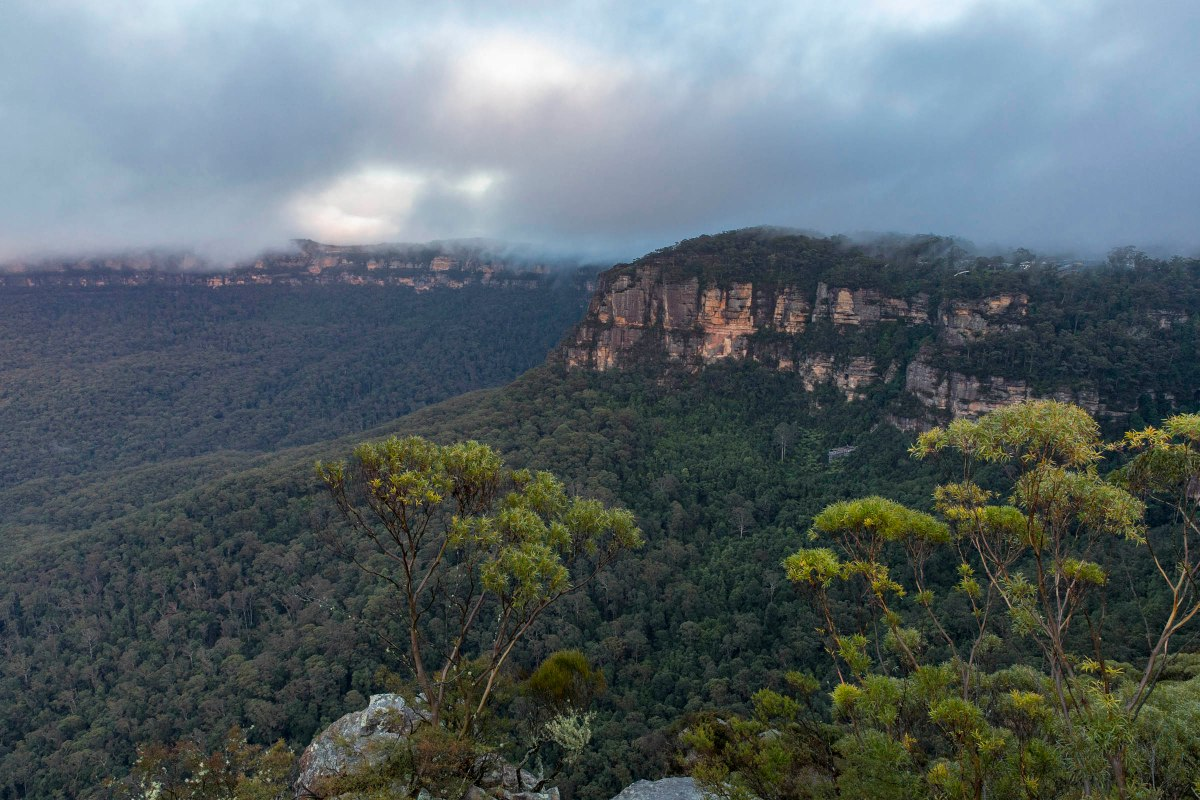 Blue Mountains 05