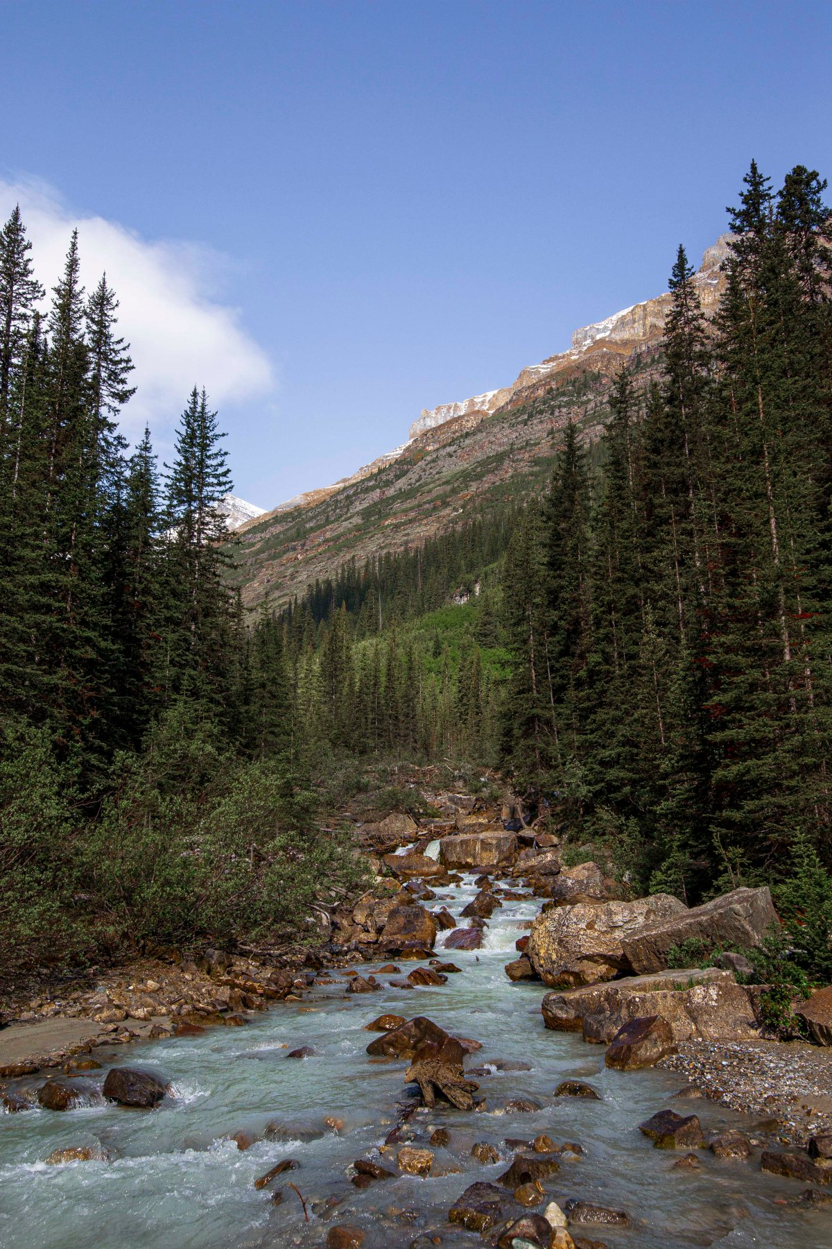 2019-06-22 Plains of Six Glaciers Hike 06