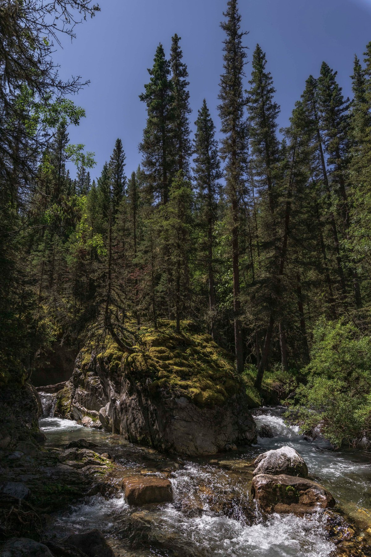 2019-07-21 Lillian Lake & Galatea Lakes Hike 03