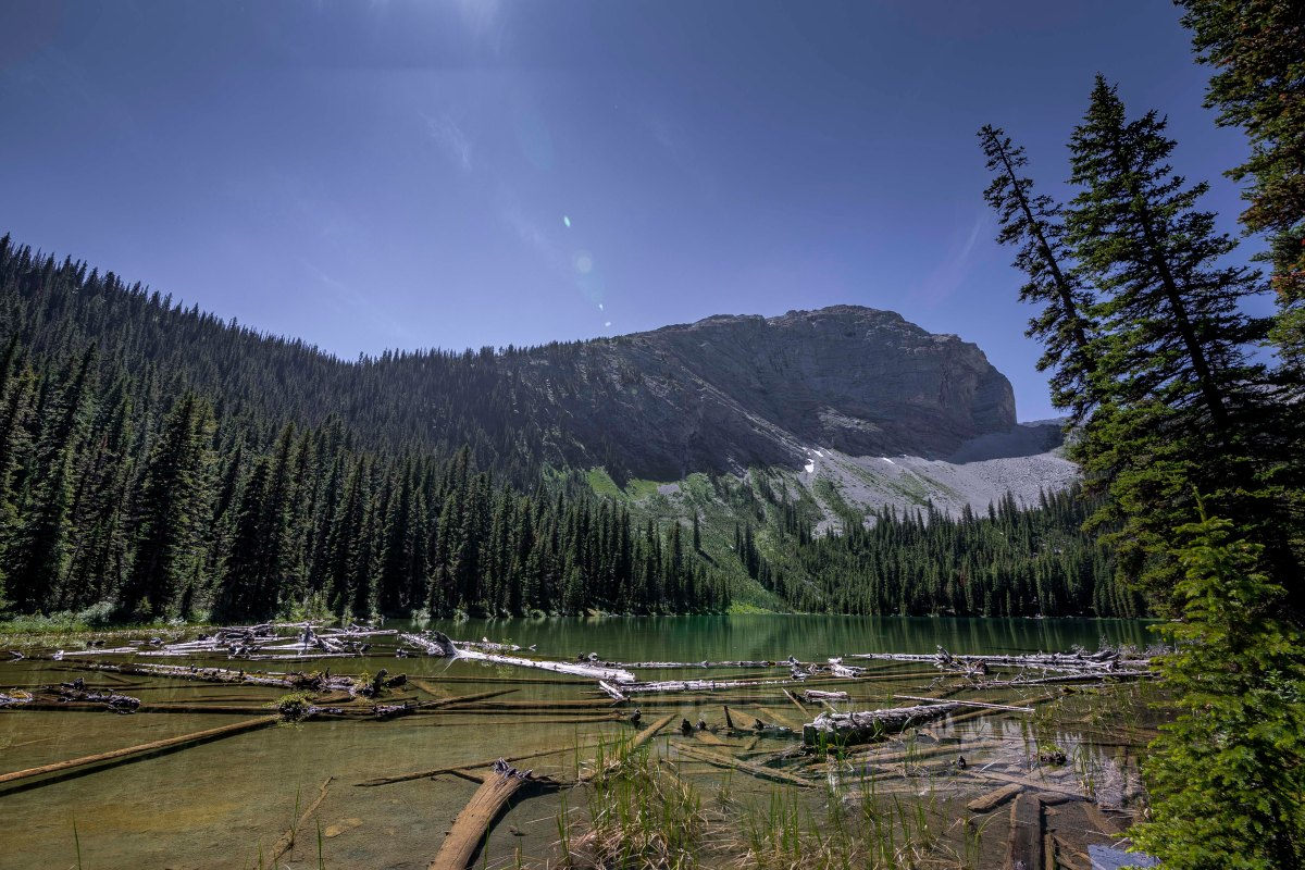 2019-07-21 Lillian Lake & Galatea Lakes Hike 05