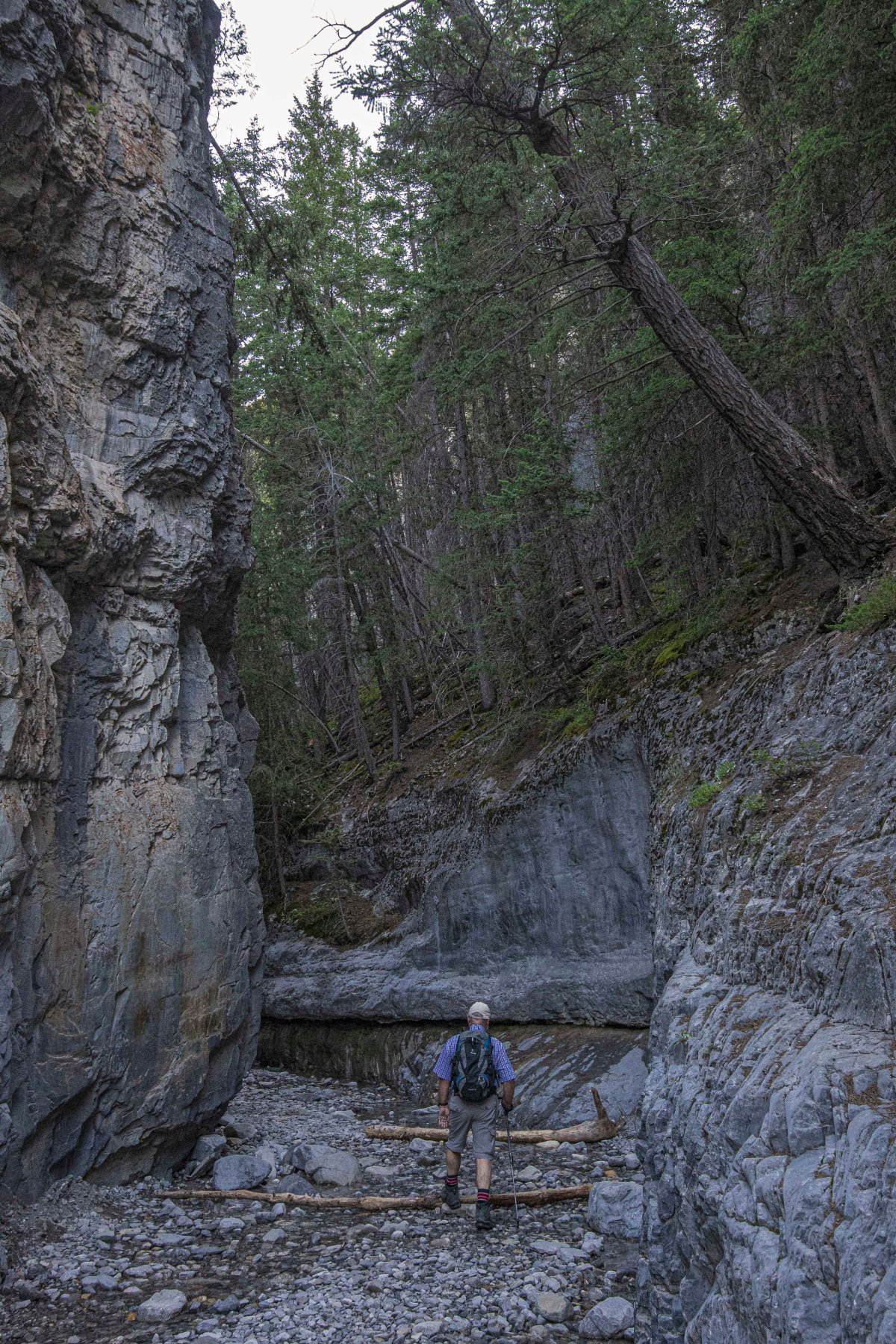 2019-07-28 Grotto Canyon Hike 3