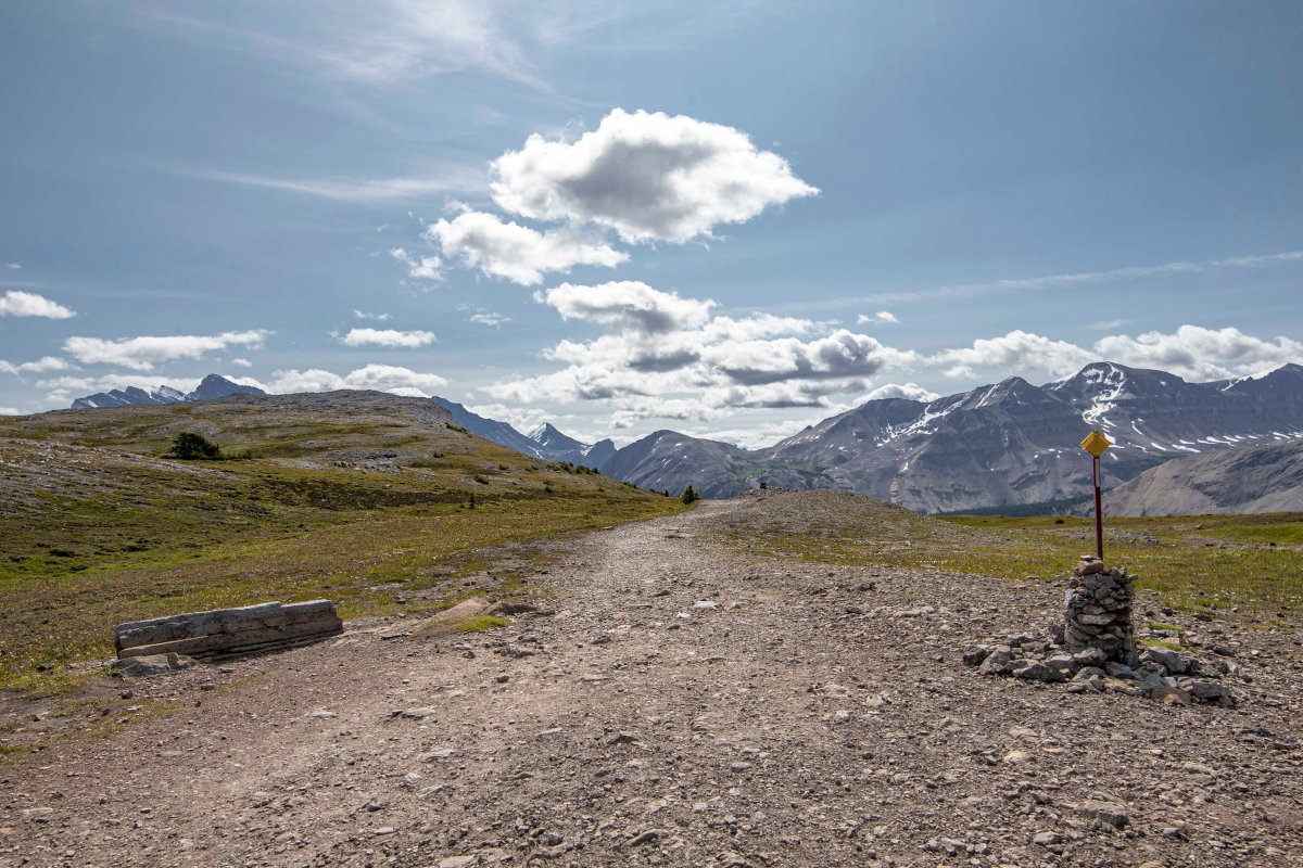 2019-07-29 Parker Ridge & Edith Cavell Hikes 09