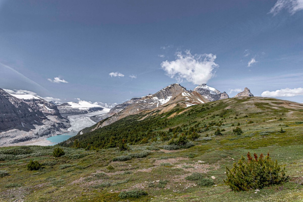 2019-07-29 Parker Ridge & Edith Cavell Hikes 11