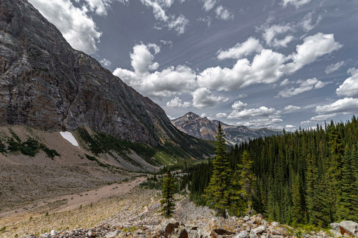 2019-07-29 Parker Ridge & Edith Cavell Hikes 16