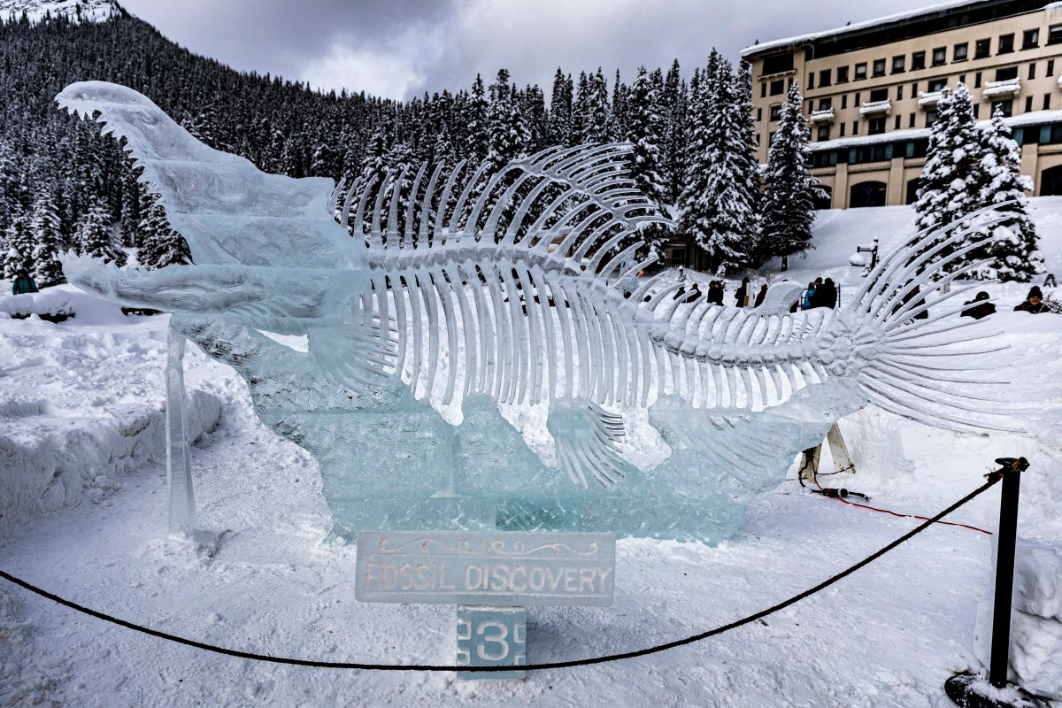 2020-01-17 Lake Louise Ice Sculptures 33