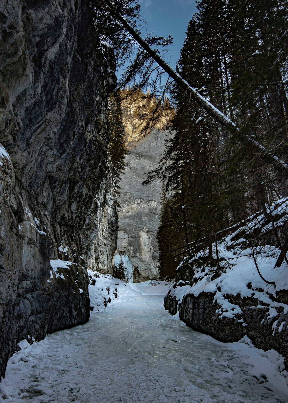 2020-03-21 Grotto Canyon 1