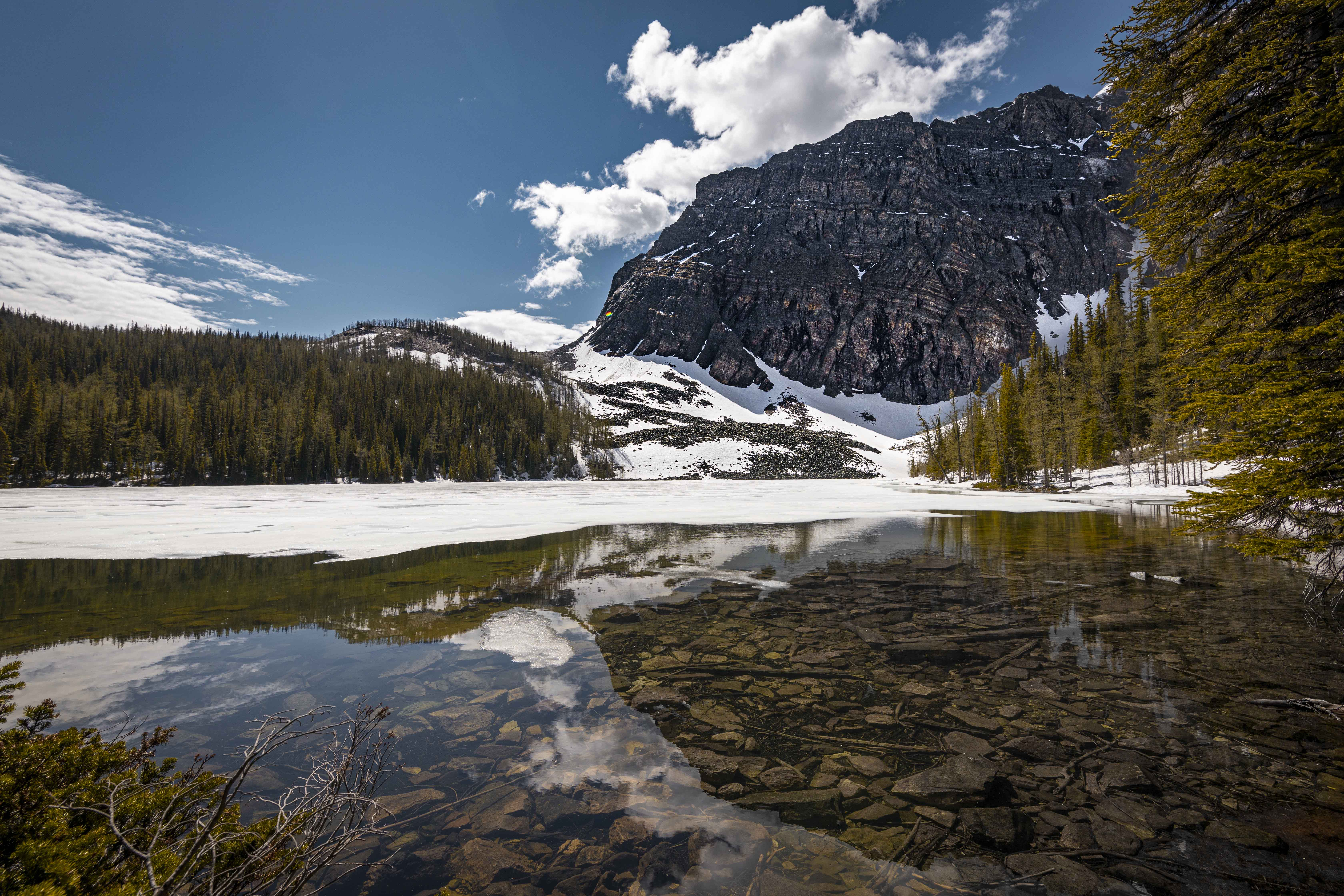 2020-06-19 Vista Lake & Arnica Lake Hike 8